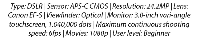 Canon EOS Rebel T7i 800D