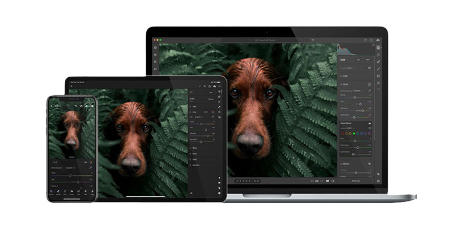 Adobe lightroom banner- clipping solutions