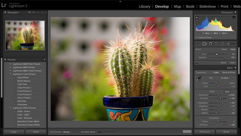 adobe lightroom desktop interface