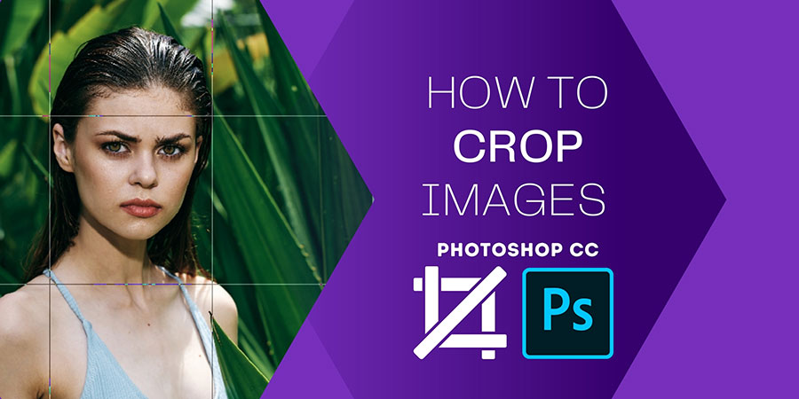 How to Crop Image in Photoshop cc in 2021 Banner Image